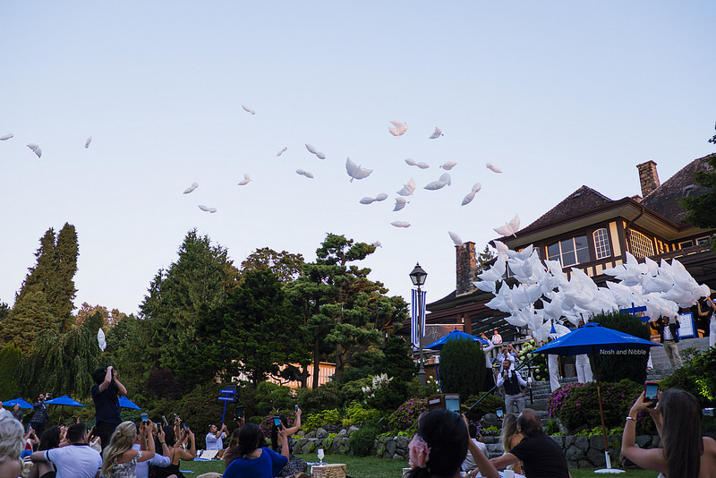 Grey Goose Balloon Release