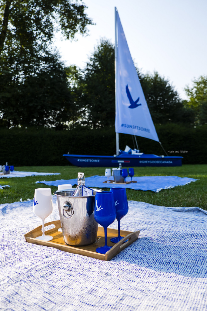 Grey Goose Picnic Blankets