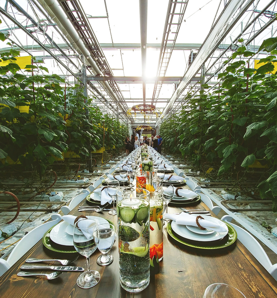 BC Greenhouse Longtable Dinner