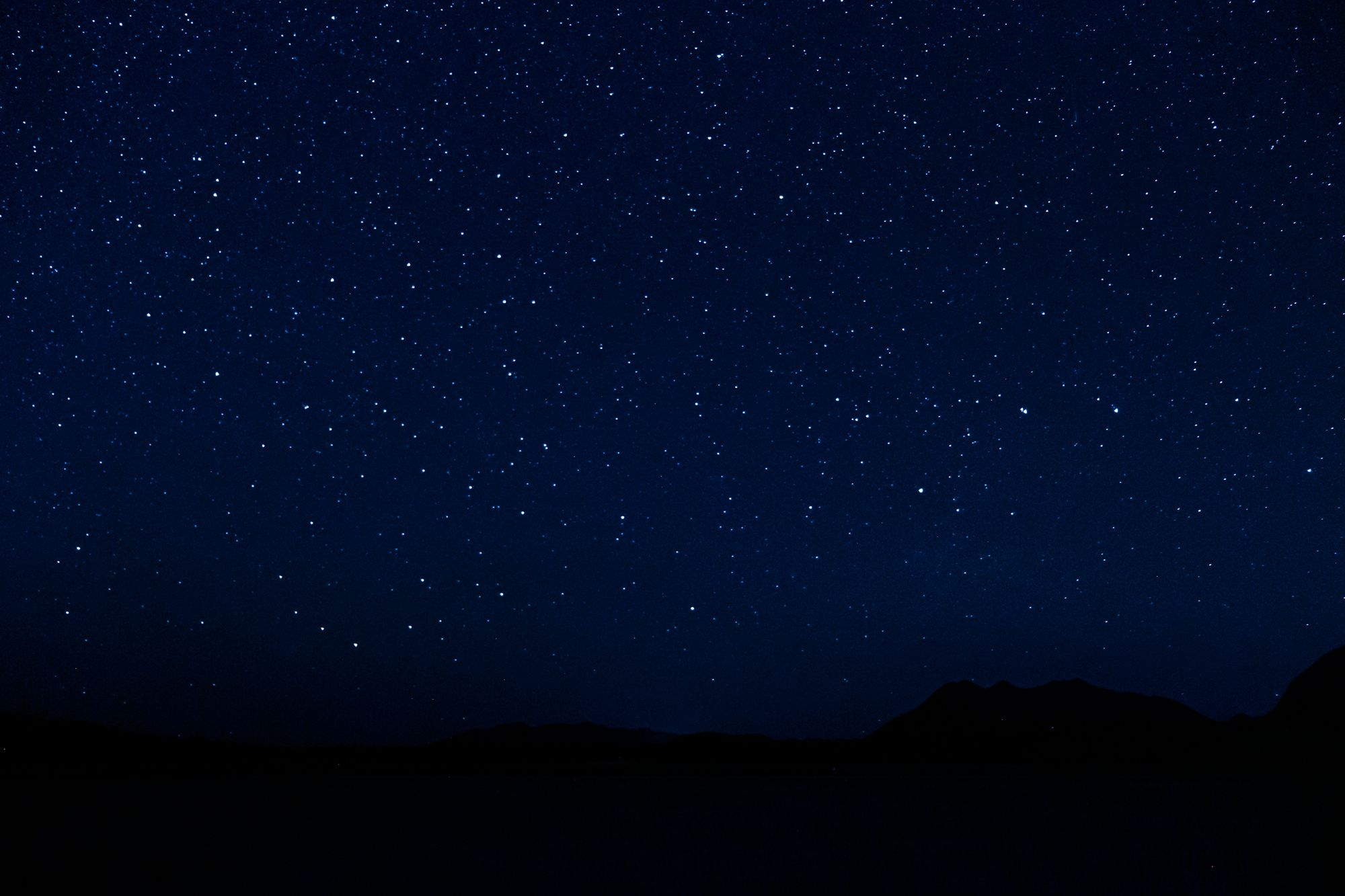 Tofino –Stars